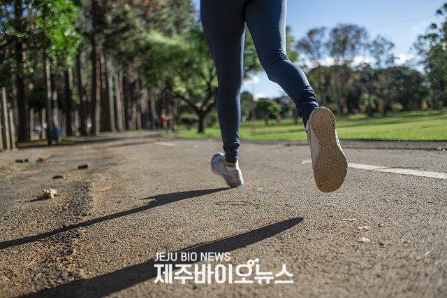 running-4782722_640.jpg